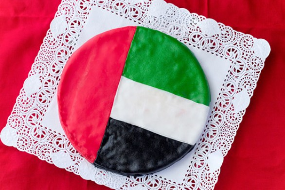 47th uae national day vector