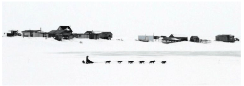 Iditarod photos - credit, Nome Nugget Newspaper.