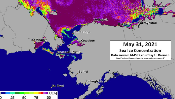 Sea Ice Concentration Conditions 31 May 2021 in the Bering, Chukchi and Beaufort Seas