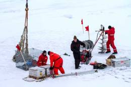 IARC-led NABOS II 2015 expedition team installs an ice mass balance buoy and drills holes in the ice for an ice-tethered profiler and buoys in the East Siberian Sea. (E. Ershova)