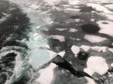 Breaking ice!