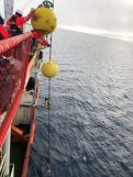 This photo shows how the floats and instruments can be spaced out on the mooring line. Below the two yellow steel spherical floats is a yellow cylindrical beacon, followed by a red, white and blue Acoustic Doppler Current Profiler (ADCP).