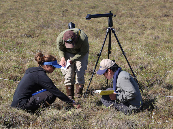Amy Breen (left) teaches her students about vegetation sampling in the field, using an optical device on a tripod to measure plant cover at each point along the transect. (Photo by H. Cheong)