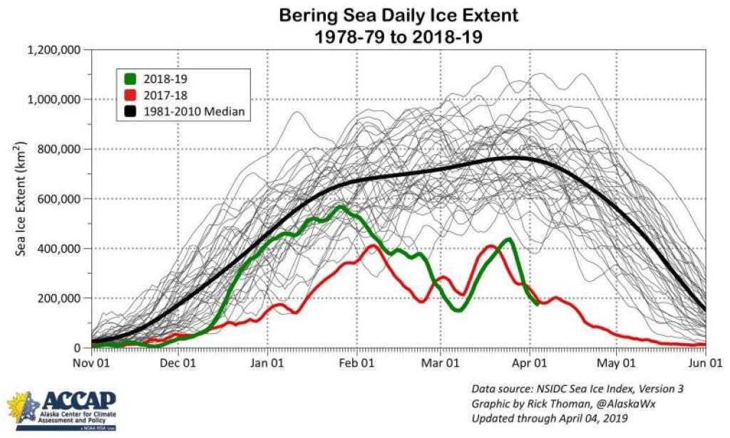 graph of bering sea daily ice extent
