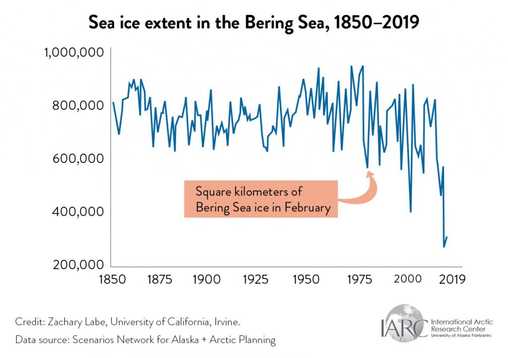 bering sea ice extent graph