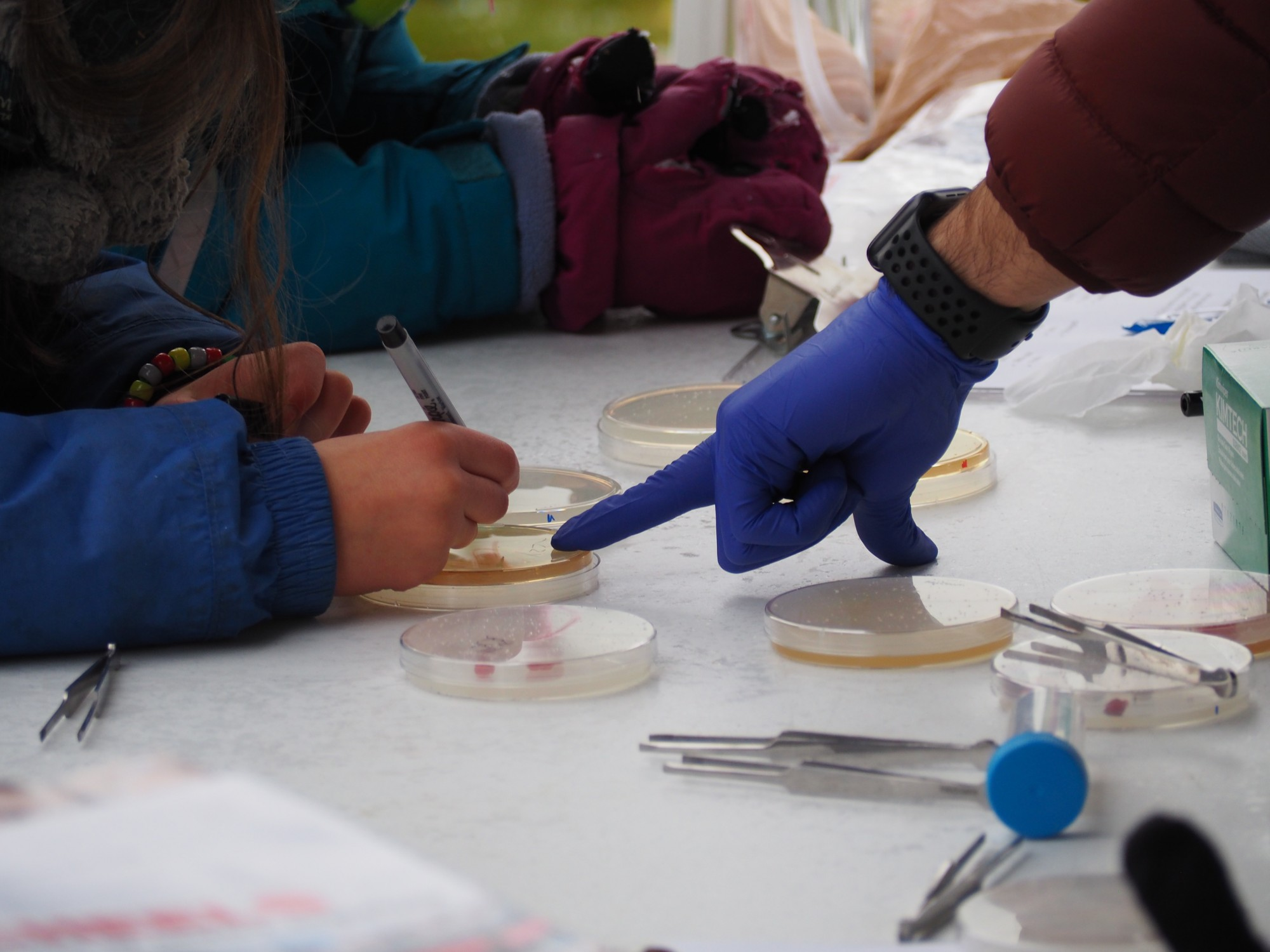 A student writes their name on a petri dish while being instructed by a UAF researcher.