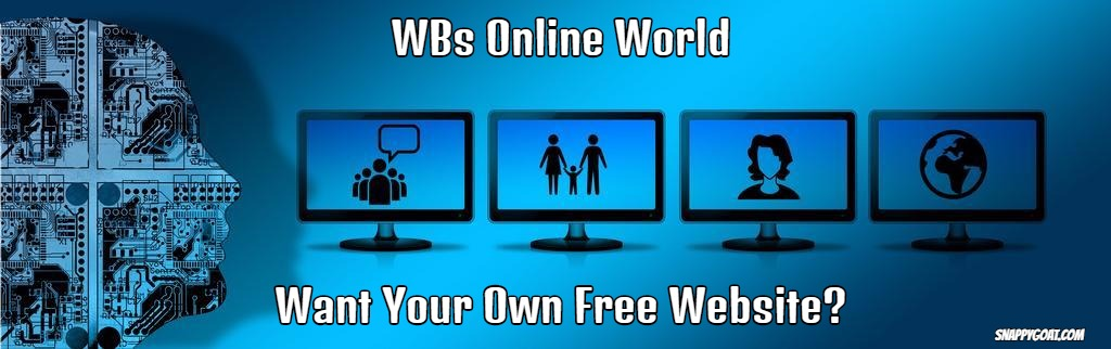WBs Online World