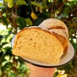 pão de 20 dobras