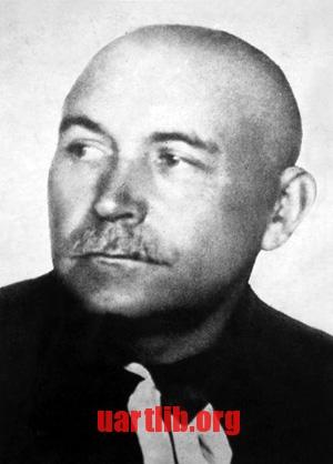 Павло Волокидін