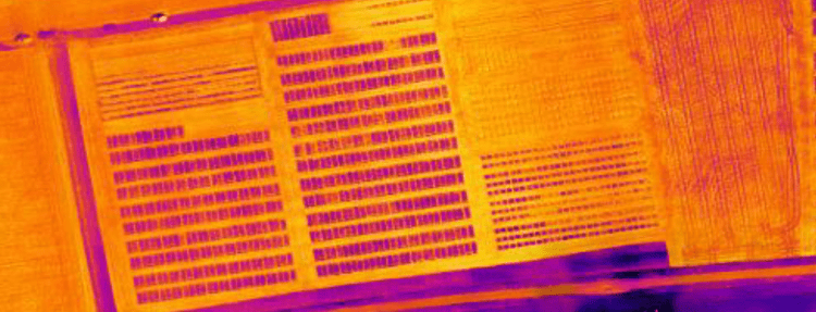 Aerial-thermography-agriculture-sensors