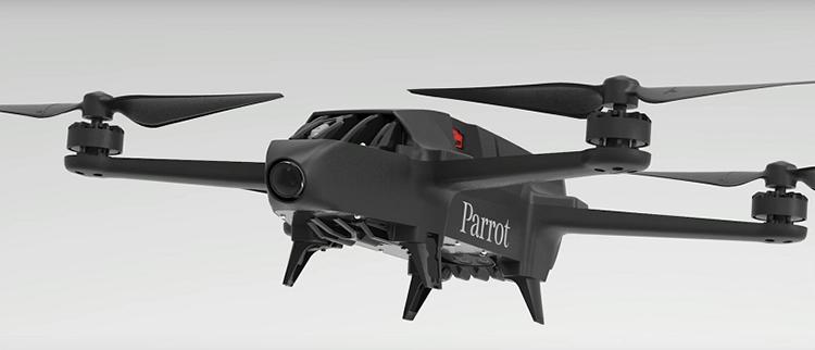 parrotbluegrass-drone