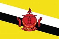 drone laws in Brunei