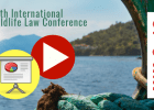Slides and videos of the 19th International Wildlife Law Conference (IWLC-19)