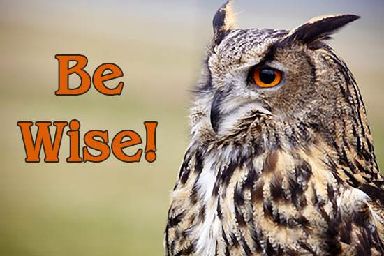 Be Wise!