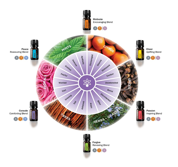 Essential Oils emotional aromatherapy kit
