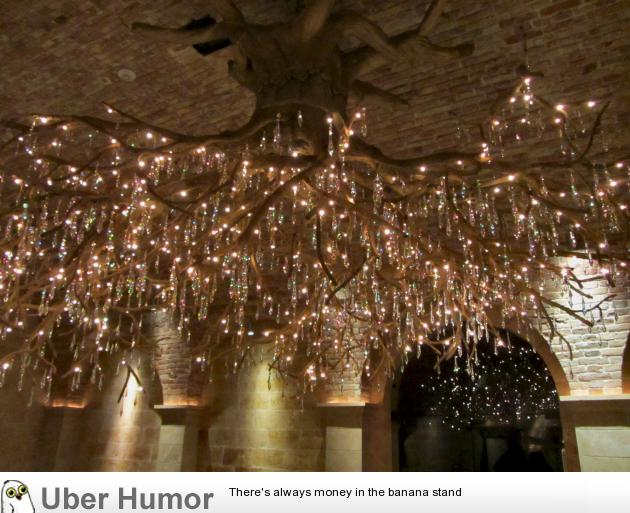 Tree root chandelier – Funny Pictures