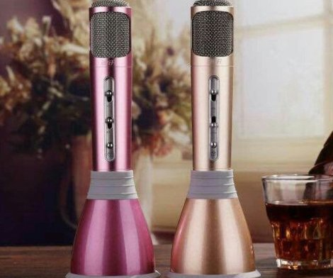 KTV Microphone Bluetooth Speaker