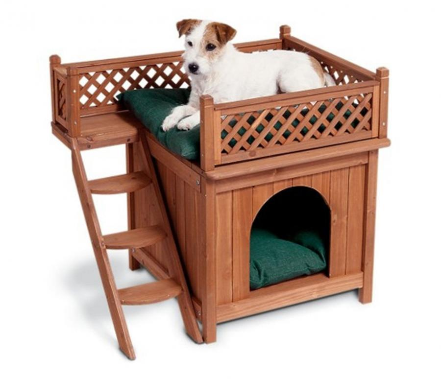 Dog Bed Bunk Beds