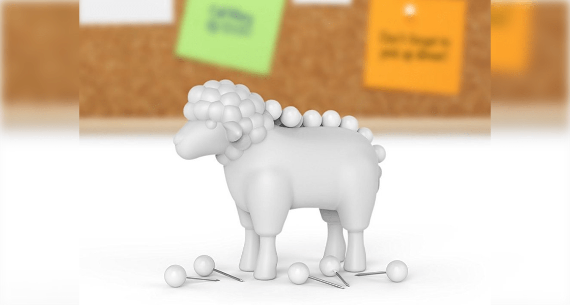 Sheep Push Pin Holder
