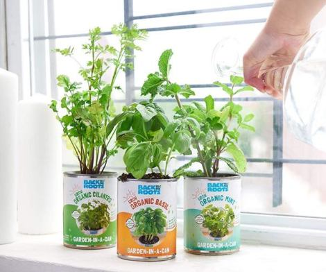 Back to the Roots Garden-in-a-Can Kitchen Herb Garden