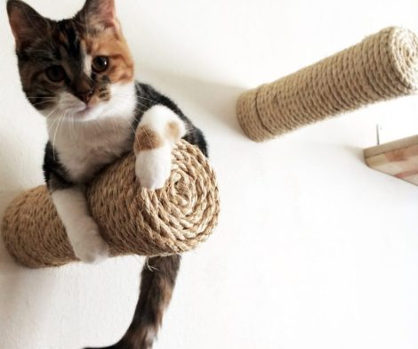 Floating Sisal Cat Post Step