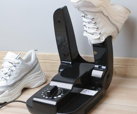 Portable Drying Device for Shoes, Boots and Gloves