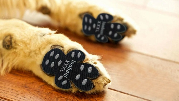 Dog Paw Anti-Slip Walk Assistant Traction Pads