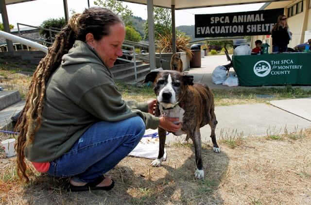 Soberanes Fire evacuee Stephanie Shelley comforts Spike, her 14-year-old dog, at the SPCA Animal Evacuation Shelter in Carmel, California, U.S. July 27, 2016. REUTERS/Michael Fiala