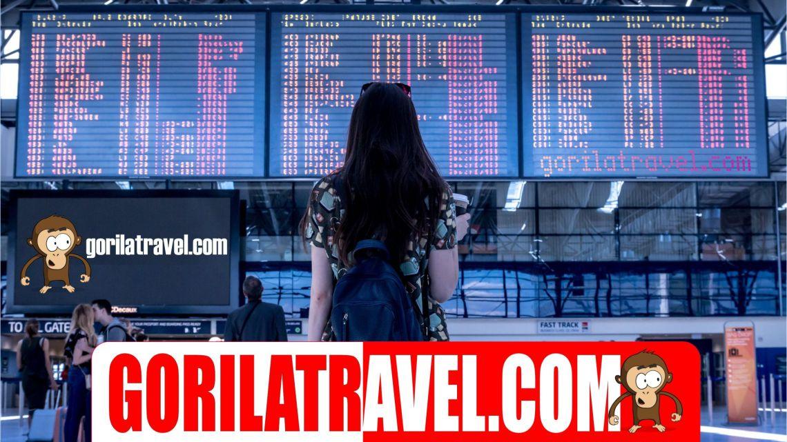 Gorila Travel Cheap Flights Hotel Car Rental and More