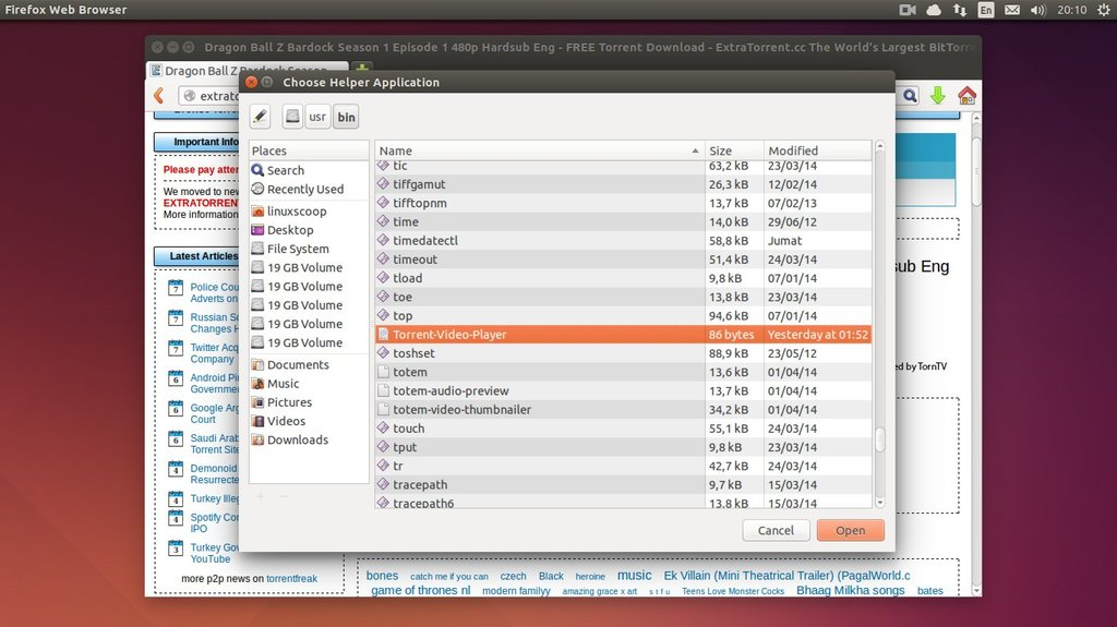 ubuntu move file to bin