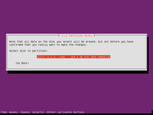 Ubuntu Server 14.04 Partition LVM