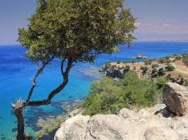 The Akamas National Forest Park will operate by the end of 2022, President of Cyprus Nicos Anastasiades said on Tuesday, adding that this is a feasible goal and the government remains committed in achieving it.