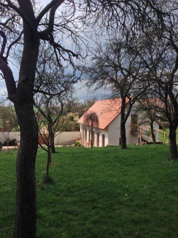 U-Mišpule_Ubytování-Čížov_Národní-park-Podyjí_ve-dvoře---3