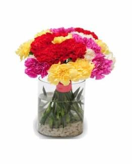 15 Mix Color Carnations Hand Bunch