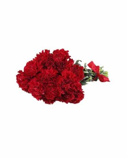 12 Red Carnations Hand Bunch