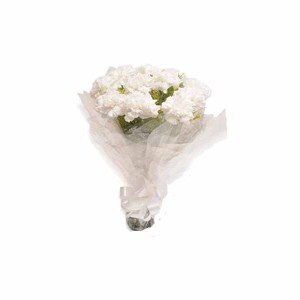 10 White Carnations Hand Bunch