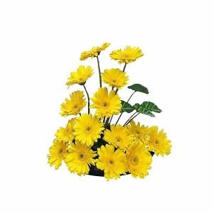 Yellow Gerberas Basket Arrangement