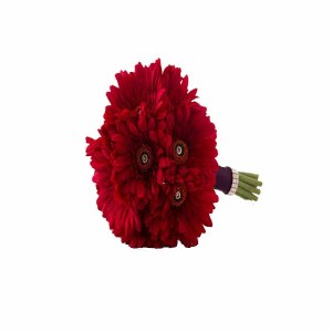 12 Red Gerberas Hand Bunch