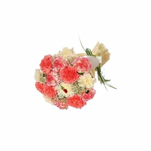 12 Pink & Yellow Carnations Hand Bunch