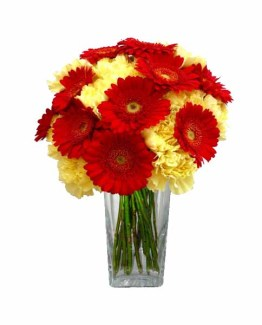 Gerberas & Carnations Bunch