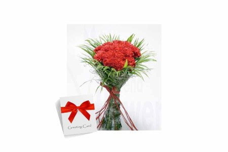 Red Carnations bouquet with Card