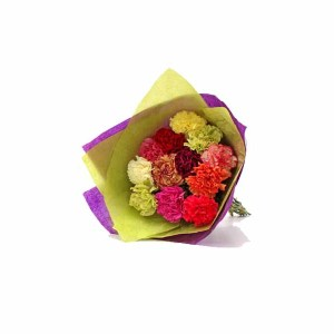 12 Mix Color Carnations Hand Bunch