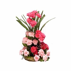 25+ Pink Carnations Basket Arrangement