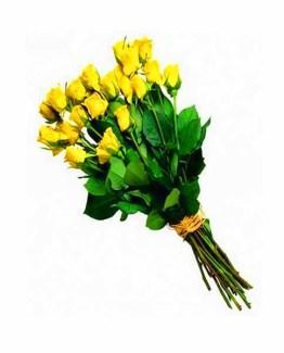 20 Yellow Roses Handbunch