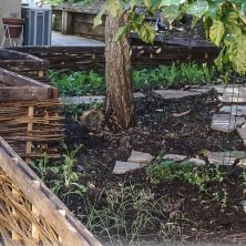 Willow Fence on the Kitchen Garden