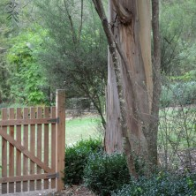 Gate to the top garden - where you can watch the chooks