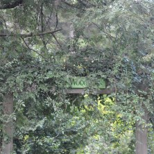 Woodland Entry along to Edna Walling Walk