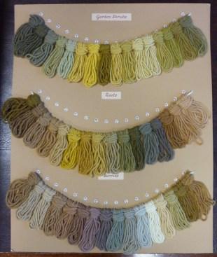 Wool samples dyed from garden shrubs.