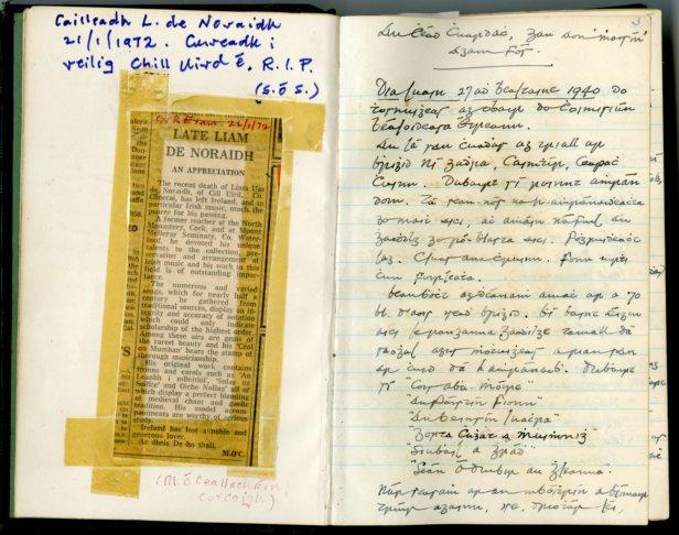 Liam de Noraidh diary (NFC 872/3-4)