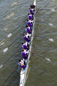 Senior Men's 2nd VIII+ at HoRR, 2016